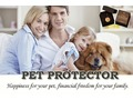 Protect your Pet from Chemicals and Earn $25 per referall